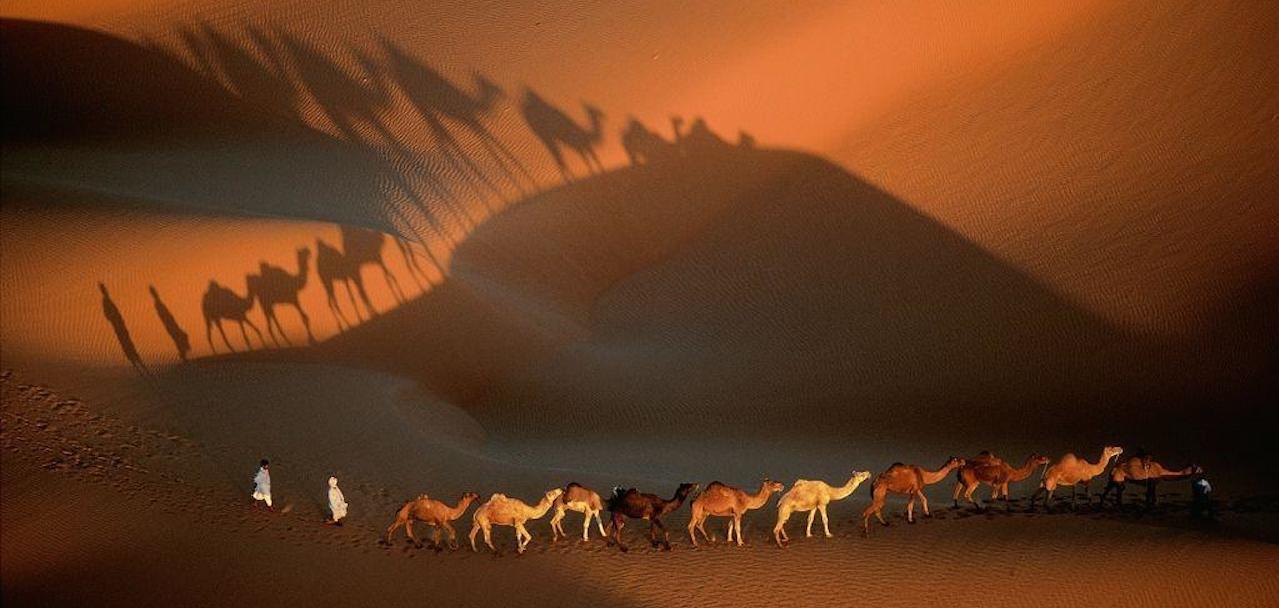home-james-global-real-estate-mauritania